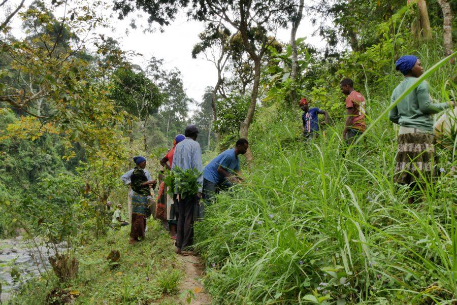 people planting trees in Northern Tanzania