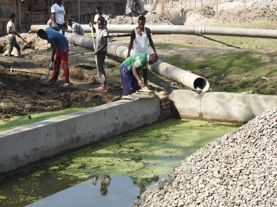 People working on the constructed wetland Amora Gedel
